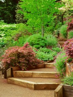 sloped stair design decomposed granite - Google Search
