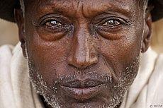 Le photographe Reza rend hommage aux travailleurs du café