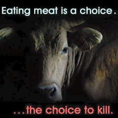 choose life; go #vegan for cruelty-free choices