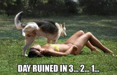 16 Pictures of People Who Wish The Day Would End...Now 18