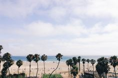Beach and palms trees....the quintessential Southern California scene and picture-perfect vacation!