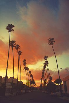 What is your favorite thing about living in Los Angeles?