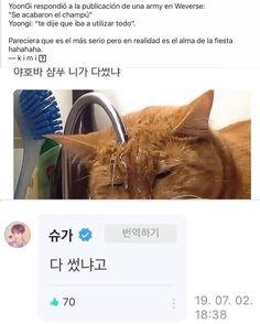 Mi azucar Min Yoongi Bts, Min Suga, Best Memes, Funny Memes, K Pop, Bts Tweet, Drama Memes, Fandom Memes, Bts And Exo
