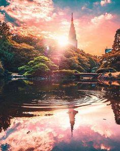 Shinjuku Gyoen in Tokyo Japan 🎌 📷 By: Yako_flpr3 . . . . . #japan #japón #japon #nippon #igers #instadaily #instatravel #travel #photography #love #picoftheday #landscape #🇯🇵 #photographer #日本 #instagood #素敵 #visitjapan #amazing #traveling #travelphotography #travelgram #amazingview #madeinjapan #traditional #japanese #shinjuku #tokyo #park #beautiful