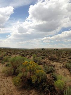 5 free things to do in southeast Wyoming