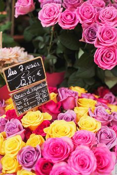 an early evening in Paris shopping for flowers