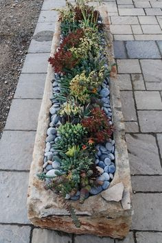 An old French stone trough, commonly used to water and feed livestock, and ancient stone fermentation containers used by the Romans to make wine, to be garden planters. The rustic nature and appearance of these old, hand-carved stones, make the most attractive planters, especially for a succulent planting.