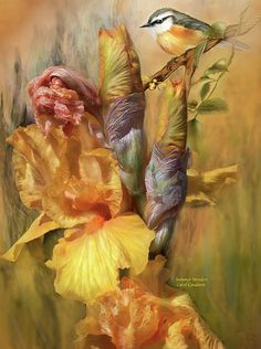 Summer Wonders by Carol Cavalaris. Prints available at Fine Art America. With the sun comes summer and all its wonders. This painting of a bird perched atop golden yellow irises is from the 'Beauty In Nature' collection of art by Carol Cavalaris.