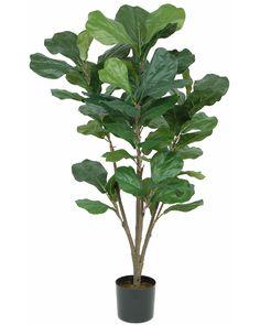 Silk Fiddle Leaf Trees  Floor Plants #2323-4/P    4' $75 but must order 2 = $150