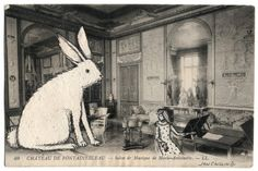 'The rabbit in the room.' from the Drawing On Postcards series