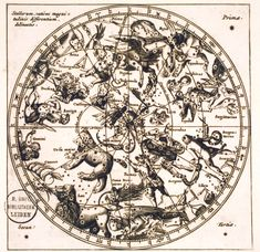 constellations animals - Google Search