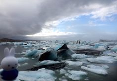 Miranda heeft een dikke jas aan maar nijntje bezocht Jökulsárlón, het bekendste en grootste gletsjermeer in IJsland zonder het koud te hebben!