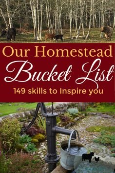 Homestead Skills to learn Check out our homestead bucket list with 149 homestead skills for beginner Off Grid Homestead, Homestead Farm, Homestead Living, Homestead Survival, Survival Prepping, Survival Skills, Survival Gear, Camping Survival, Emergency Preparedness