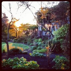 Sunrise at our 'country house' - Joy Creek Nursery | 04.14.12 | Photo by Jeff Fisher