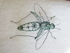Grasshopper by ~Escaron on deviantART