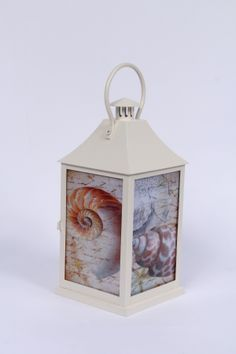 lanterns sea shell