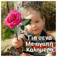 Kalimera Good Morning Picture, Morning Pictures, Good Morning Quotes, Beautiful Pink Roses, Greek Language, Love Hug, Wise Words, Wish, Qoutes