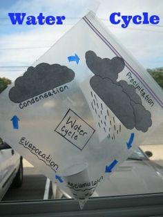 #DIY, #Tutorial, #WaterCycle