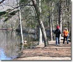 Calvert Cliffs State Park in Lusby, MD has 13 miles of trails, including long and short loops.
