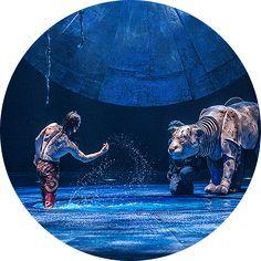 LUZIA – A waking dream of Mexico | Cirque du Soleil