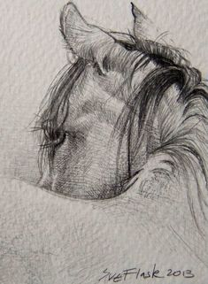 Sketches, sketches of horses, horse sketch, animal sketches, horse face dra Horse Pencil Drawing, Pencil Drawing Tutorials, Horse Drawings, Pencil Art Drawings, Animal Drawings, Drawing Sketches, Sketching, Realistic Drawings Of Animals, Drawing Ideas