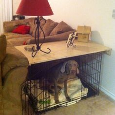 Put a medium sized Leaf of a table on top of a dog crate.. 2 in one package lol!!! Dog Bed/End Table!!