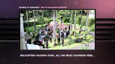 Cannes 2014 Promo & Activation Gold - ABTO (Brazilian Association of Organ Transplant) - Bentley Burial