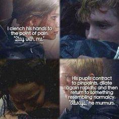 #TheHungerGames #Mockingjay Part 2 - Katniss & Peeta
