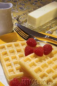 Low Carb Sweet French Waffles (Carbquik)
