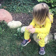 Pikachu butterfly spotter