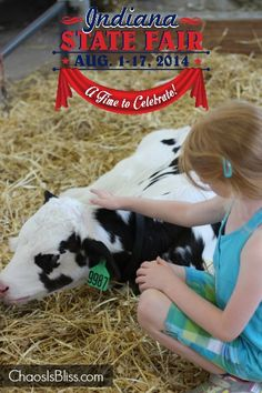 Find out all the fun highlights plus enter to win in this 2014 Indiana State Fair Ticket Giveaway, sponsored by Indiana's Family of Farmers. State Fair Tickets, Indiana State, Indianapolis Indiana, Giveaway, Highlights, Fun, Luminizer, Hair Highlights, Highlight