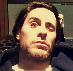 Jared | LOL, This is a great picture for funny meme inspo, it's practically begging for it.