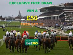 cheltenham Races - the Queen has enjoyed wins there with her own horses Cheltenham Racecourse, Henley Royal Regatta, Horse Racing Bet, Grand National, Sports Betting, Work Travel, Dolores Park, Horses