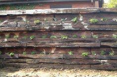 Nick Bacon's railway sleeper wall