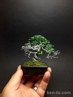 Exhibition grade deadwood wire bonsai tree by Ken To 9714142 - Click Image to Close
