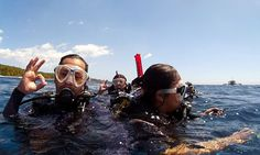 Pro Dive Davao has everything needed for local or visiting divers. Highly experienced and knowledgeable dive guides. Davao, Scuba Diving, Philippines, Boat, Island, Explore, Fun, Diving, Dinghy