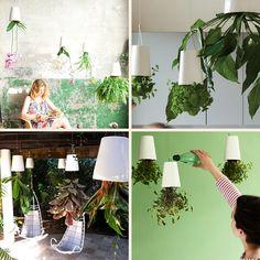 Sky Planters