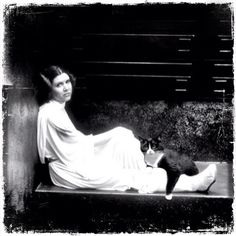 Princess leia likes cats. Therefore, cats are awesome! I knew this already, but for those who are unsure....