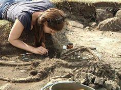 Viking Archaeology Blog: 1500 YEAR OLD SWEDISH FORTRESS MASSACRE REVEALED