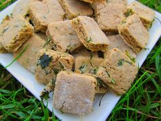(wheat and gluten-free) ginger beef and kale dog treat/biscuit recipe
