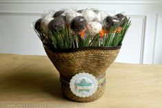Safari Cake Pop Bouquet  www.messyjessiestreats.com
