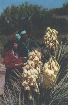 Taos Pueblo - Pop Chalee and Edward Lee Natay. No date.   (by quiet_place, via Flickr.)