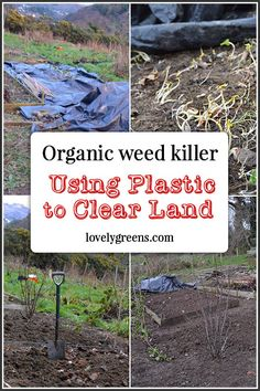 Organic Gardening: How to use Black Plastic to Kill Weeds