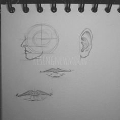 Quick drawings before going to bed. I didn't dare draw something more dynamic today. It was just a bad day for learning and me. I'm so afraid of the upcoming exam on Wednesday. It's all so stressful at the moment. [#drawing #pencil #doodle #fabercastell #pencildrawing #noob #longtimenosee #tired #blacknwhite #grey #semirealism #art #zeichnung #zeichnen #schwarzweiss #grau #photography #lips #mouth #anatomy #anatomystudy #human #study #face #ears #kunst]…