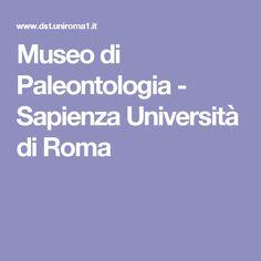 Museo di Paleontologia - Sapienza Università di Roma