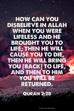 كَيْفَ تَكْفُرُونَ بِاللَّهِ وَكُنتُمْ أَمْوَاتًا فَأَحْيَاكُمْ ۖ ثُمَّ يُمِيتُكُمْ ثُمَّ يُحْيِيكُمْ ثُمَّ إِلَيْهِ تُرْجَعُونَ How can you disbelieve in Allah when you were lifeless and He brought you to life; then He will cause you to die, then He will bring you [back] to life, and then to Him you will be returned. - Quran 2:28