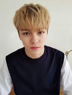 Vernon | Seventeen