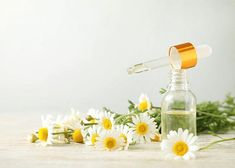 From sinus pressure to a devastating migraine: headaches are no fun! Try using these essential oils for headaches for natural pain relief. Essential Oils For Migraines, Essential Oils For Headaches, Doterra Essential Oils, Chamomile Oil, Chamomile Essential Oil, Eucalyptus Essential Oil, Headache Symptoms, Oil For Headache, How To Relieve Headaches