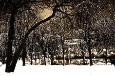Capture Minnesota Photo Contest - Starry Starry Night II by Mary Ellen Evans