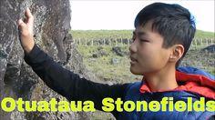 Otuataua Stonefields Historic Reserve, Auckland